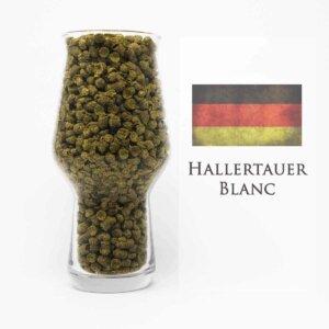 Hallertauer Blanc Hopfen