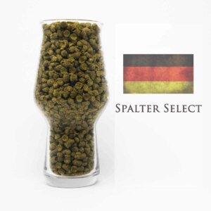 Spalter Select Hopfen