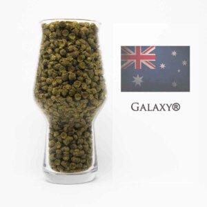 Galaxy Hopfen