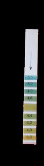 pH Messstreifen